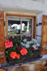 Fiori alla finestra del Rifugio Cason (Rasciesa - Val Gardena)